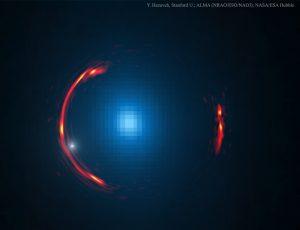Lensed SDP.81 discover faint dwarf galaxy for us